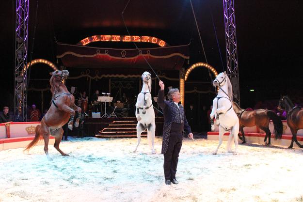 koncerter i tivoli københavn skandinavisk dyrepark rabat