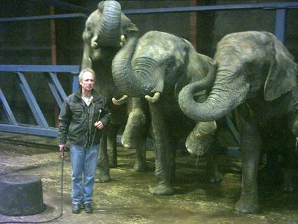 bordel hvidovre odense zoo adresse