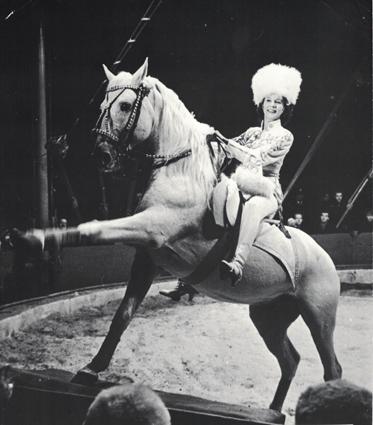 ee3968addcec Ingeborg Rhodin på lippizanerhesten Baby. Foto fra det svenske  cirkusakademis samling